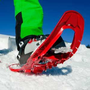HYPERFLEX SNOWSHOES
