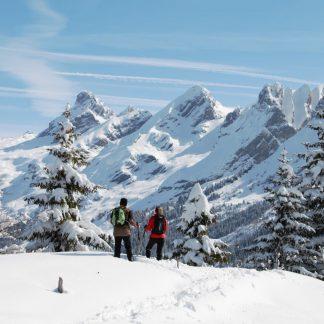 HIGHLANDER SNOWSHOES
